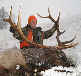 6x6 Bull Elk - 336 B&C