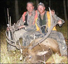 6x6 Bull Elk